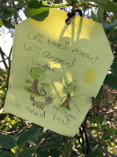 Local children pinned notes onto trees at Rimrose Valley