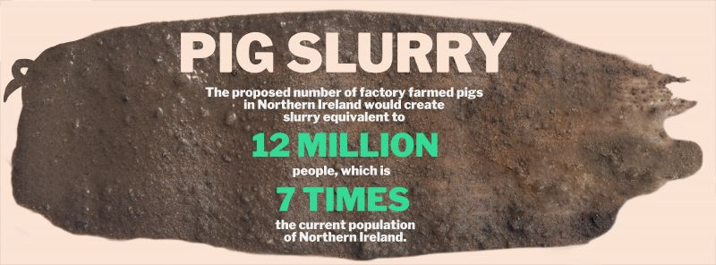 Anti-pig farm poster stating pig slurry equivalent to 12 million people would result - 7 times Northern Ireland population.
