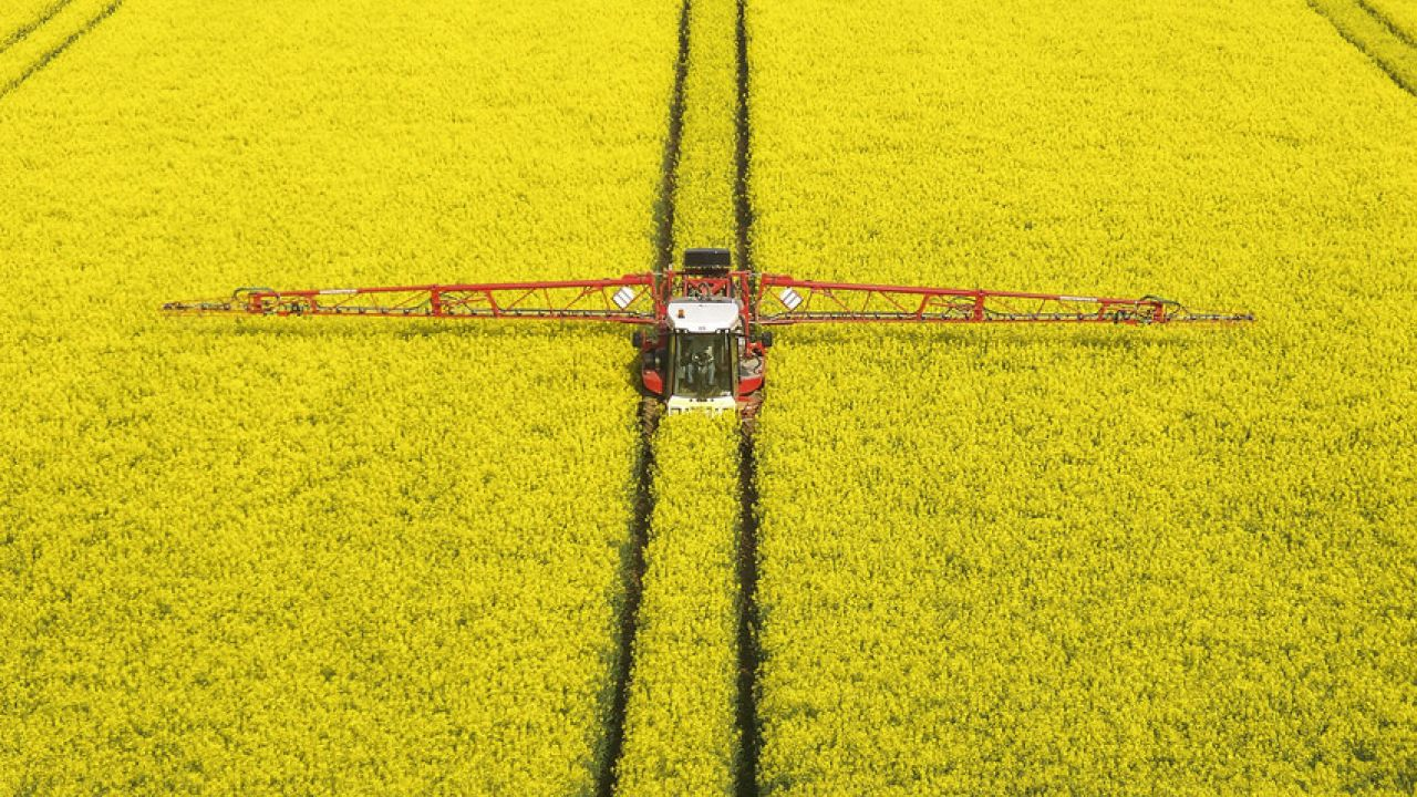 photo of oilseed rape field being sprayed