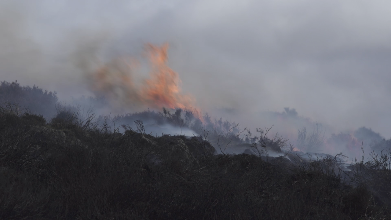 Photo of moorland in flames