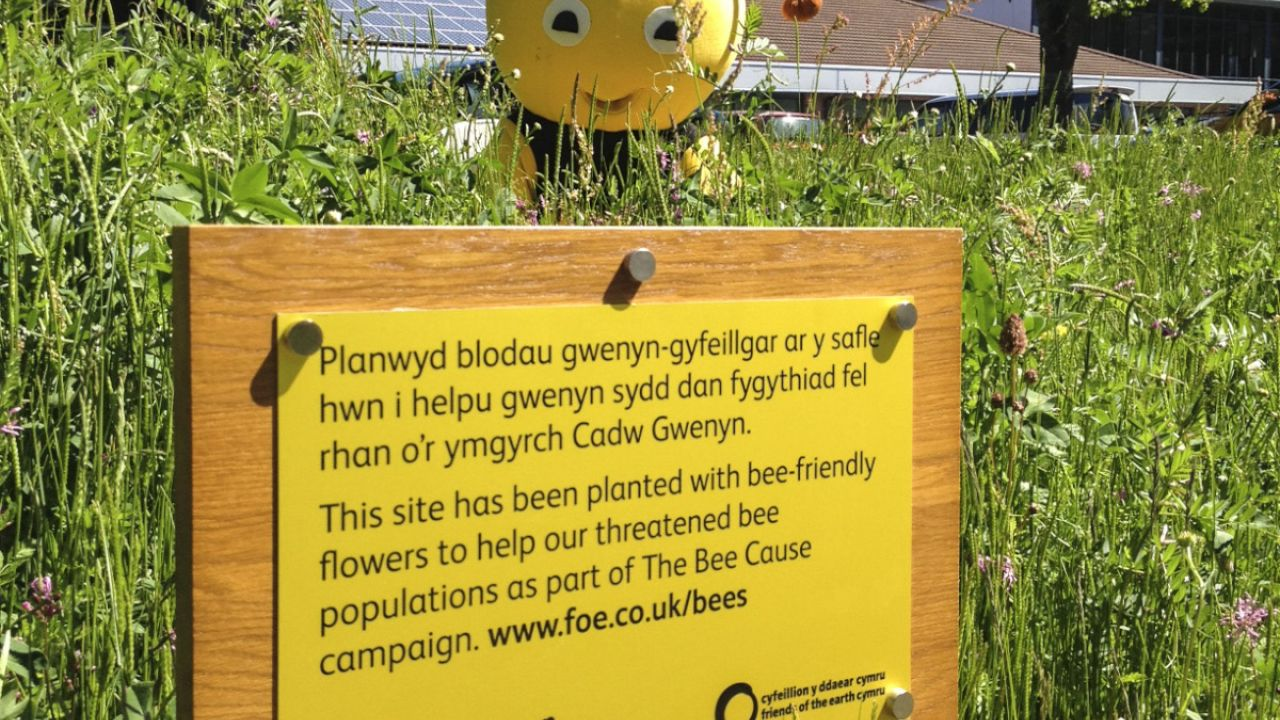 Bee world by Bron Afon, a social housing association in Torfaen, who have created 3 bee worlds, this one at their HQ in Cwmbran, Wales