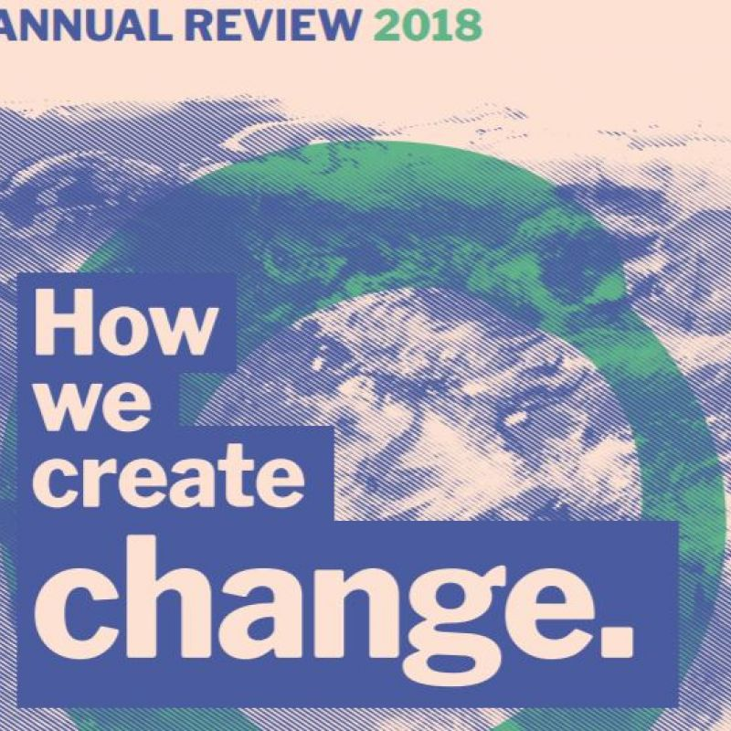 Annual Review 2018