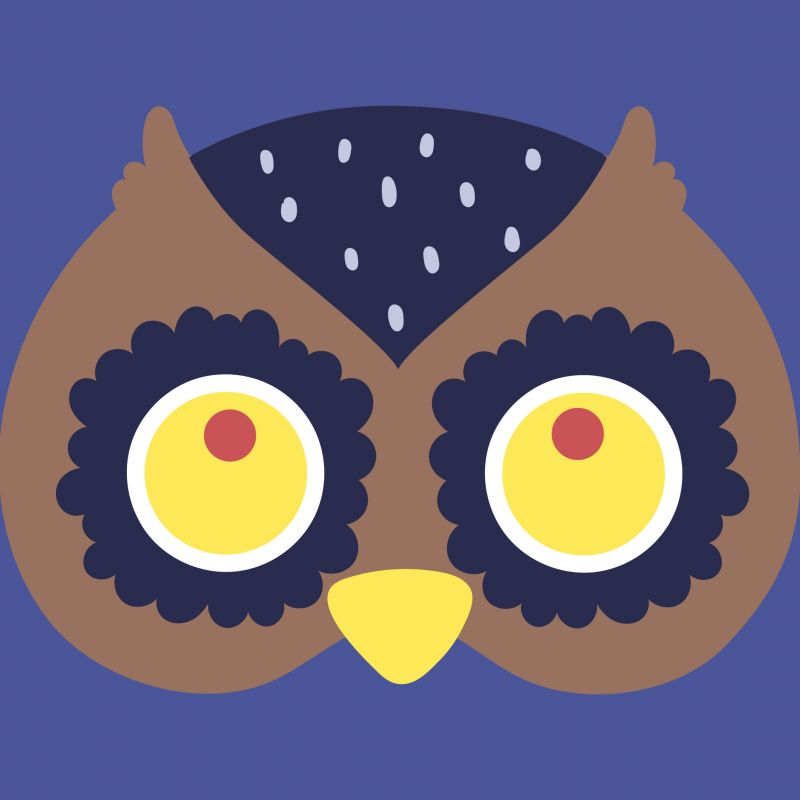 An animation of an owl