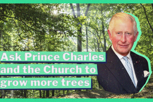 Image of Prince Charles superimposed over a forest with the words 'Ask Prince Charles and the Church to grow more trees'