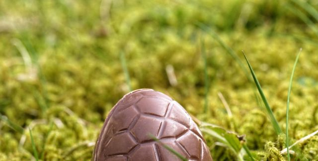 Unwrapped chocolate Easter egg, outdoors on mossy ground