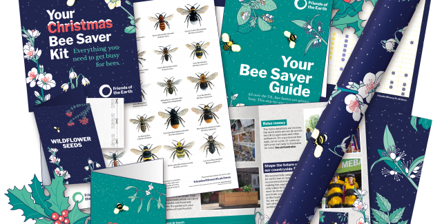 The contents of our Christmas Bee Saver Kit 2018