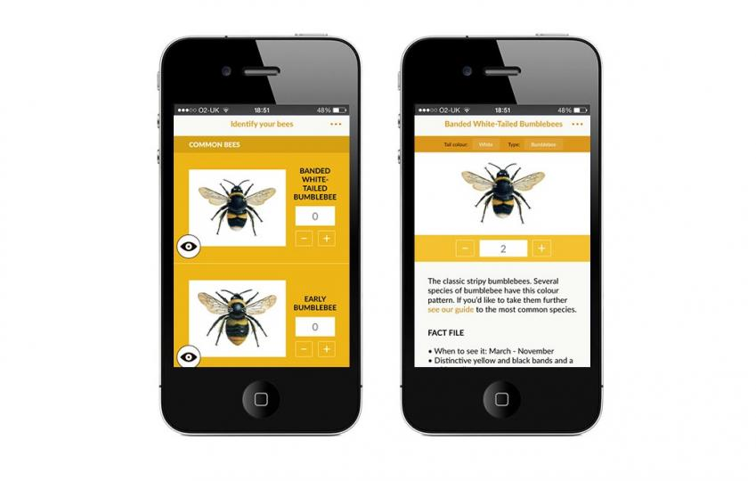 Great British Bee Count app