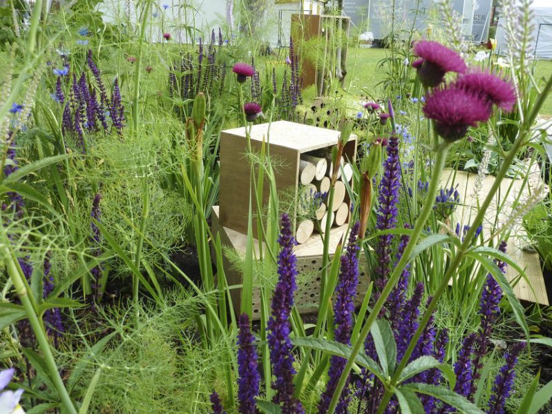 A bee-friendly garden full of greenery, purple flowers and bee hotels made from logs.