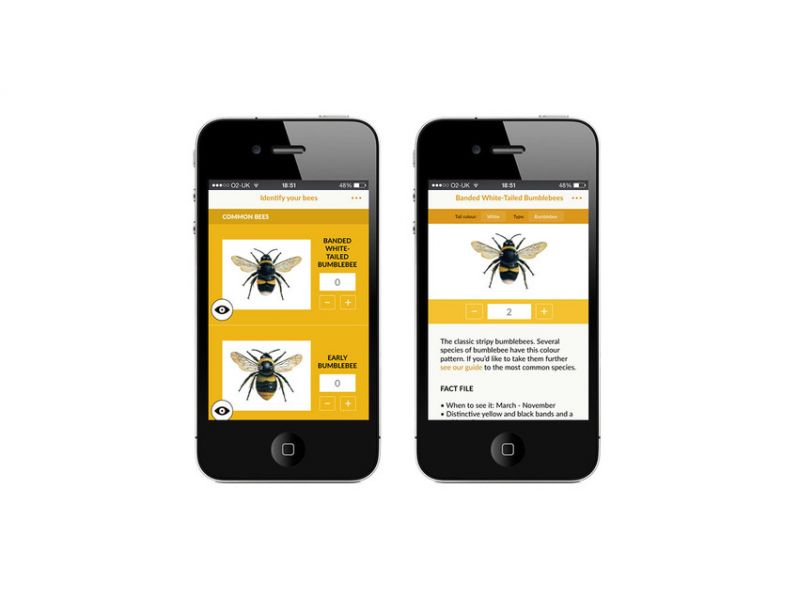 The Great British Bee Count app