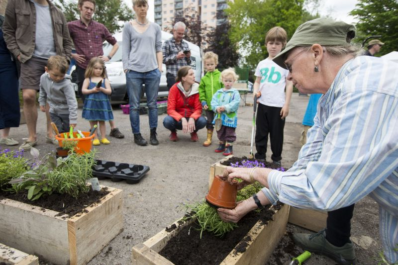 A woman shows other people how to prepare planter boxes