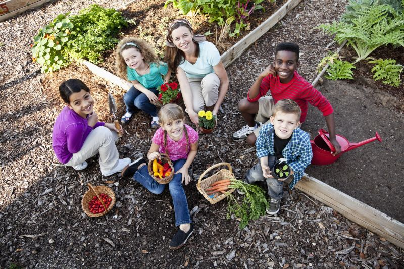 Children in vegetable allotment