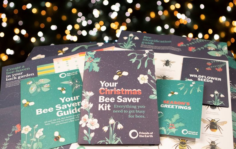 Help save our bees this Christmas
