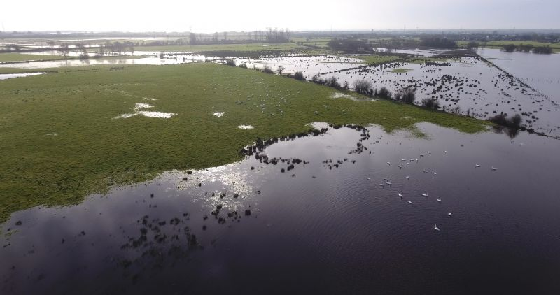 Lough Beg floodplain in Northern Ireland. Half grass, half water.
