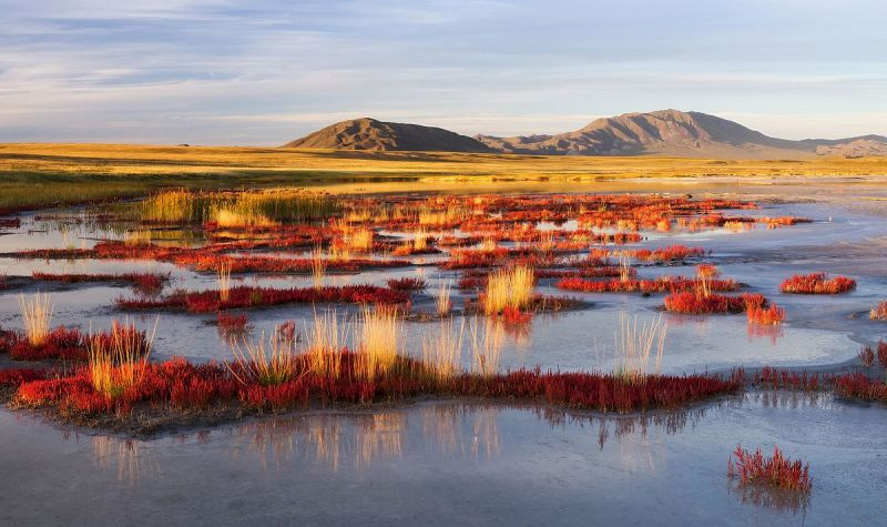 Colour photo of tundra landscape with hills, grasses and water