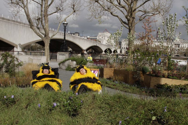 Friends of the Earth bee meadow, South Bank. Two people in bee costumes in deck chairs.