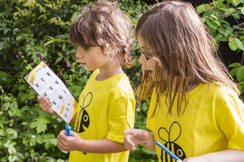 2 small girls by greenery using chart to identify bees for Great British Bee Count