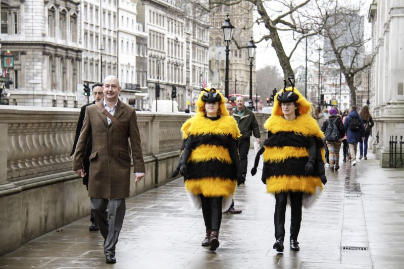 2 Bee Cause protestors in bee costumes walking down Whitehall outside Downing Street