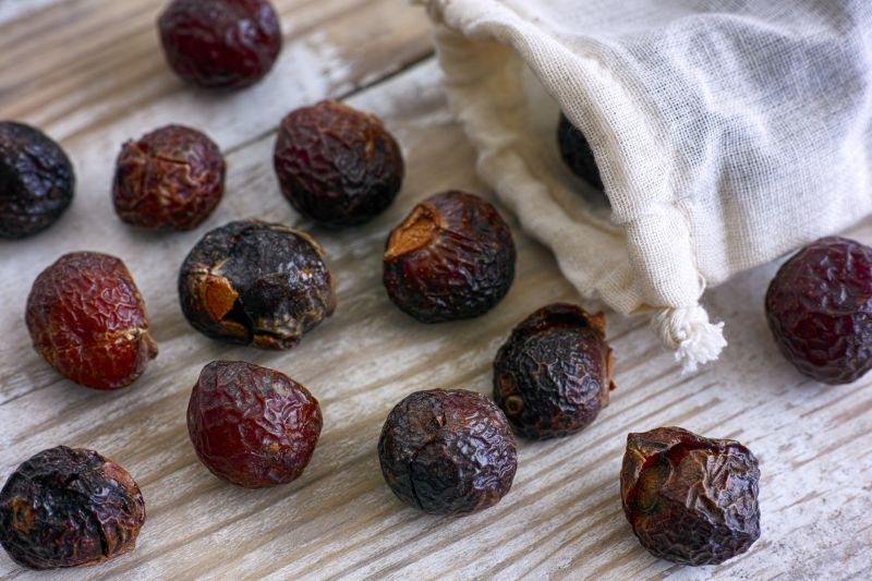 Alternatives to plastic include these soap nuts for washing laundry – soap nuts spilling from textile bag on wooden background