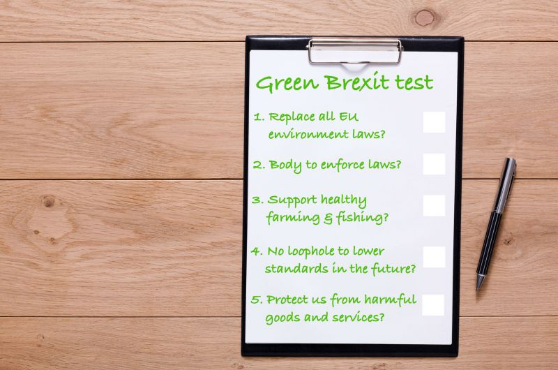 Green Brexit test sheet