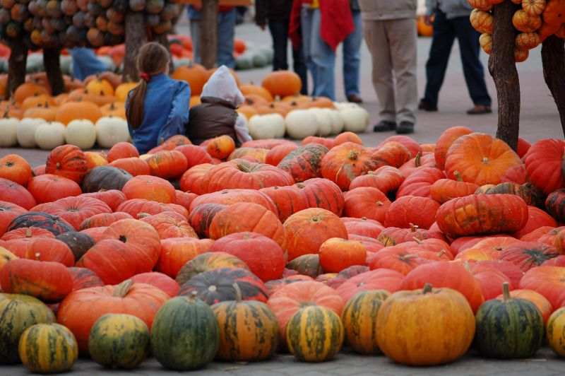 Large piles of pumpkins of different colours with people standing around.