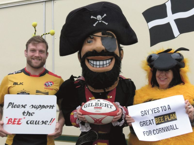 Cornwall Pirates rugby team and bees unite