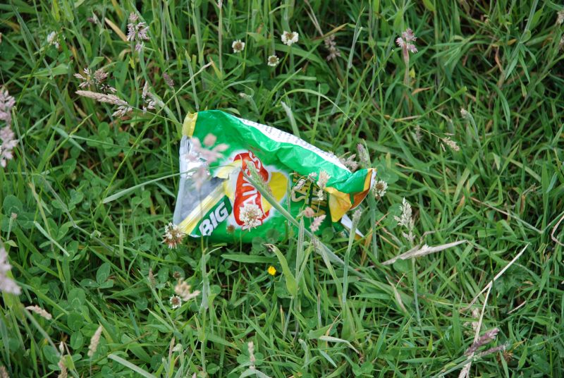 An empty Walkers salt-and-vinegar crisp packet lying in grass