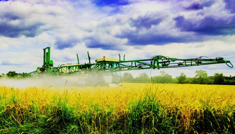 Crop spraying on field of yellow plants.