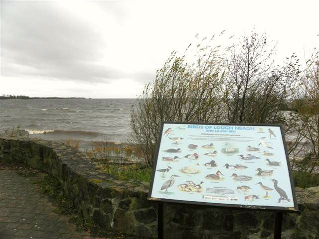 Information board showing the birds of Lough Neagh and Lough Beg