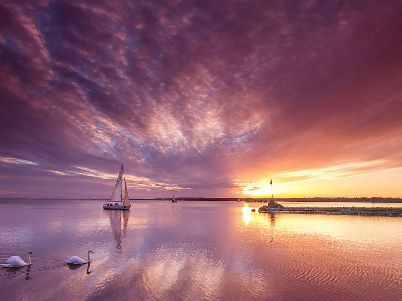 A yacht sails on Lough Neagh with 2 swans in the foreground, set against a dramatic purple skyline and incredible sunset.