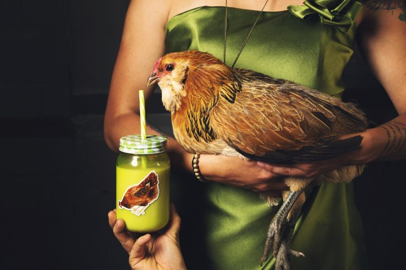 photo of woman holding hen with smoothie