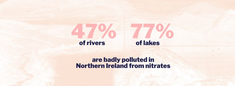 Poster showing 47% of rivers and 77% of lakes in Northern Ireland are badly polluted by nitrates