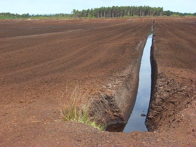 Photo of peat workings, Solway Moss, Kirkandrew