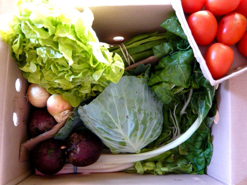 Essential organic vegetable box from Abel & Cole