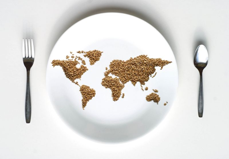 World map of brown rice on plate