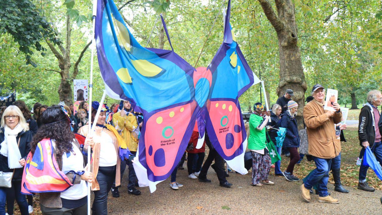 People's walk for wildlife - butterfly prop
