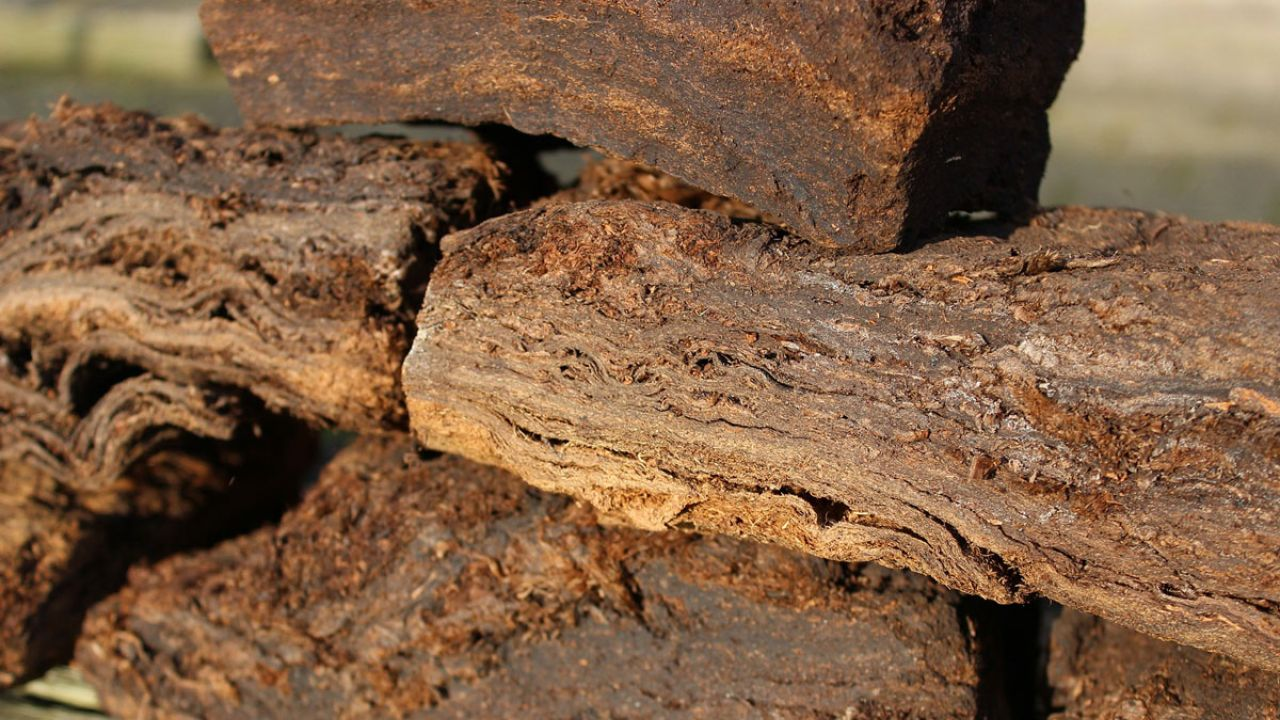 Slabs of cut peat drying in a field