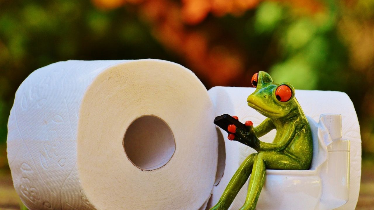 ceramic frog sitting on tiny toilet surrounded by toilet roll