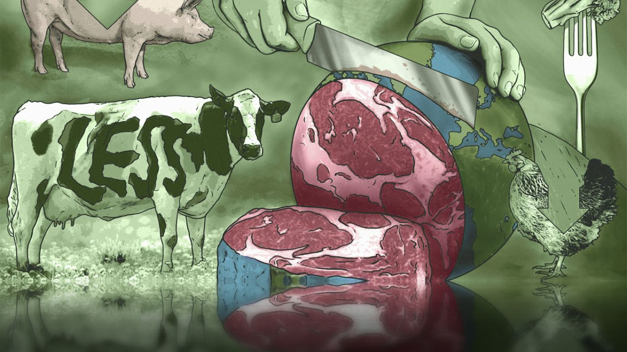 Illustration showing meat and livestock