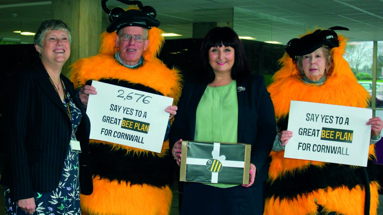 Cornwall council receiving petition to ban bee-harming neonicotinoid pesticides