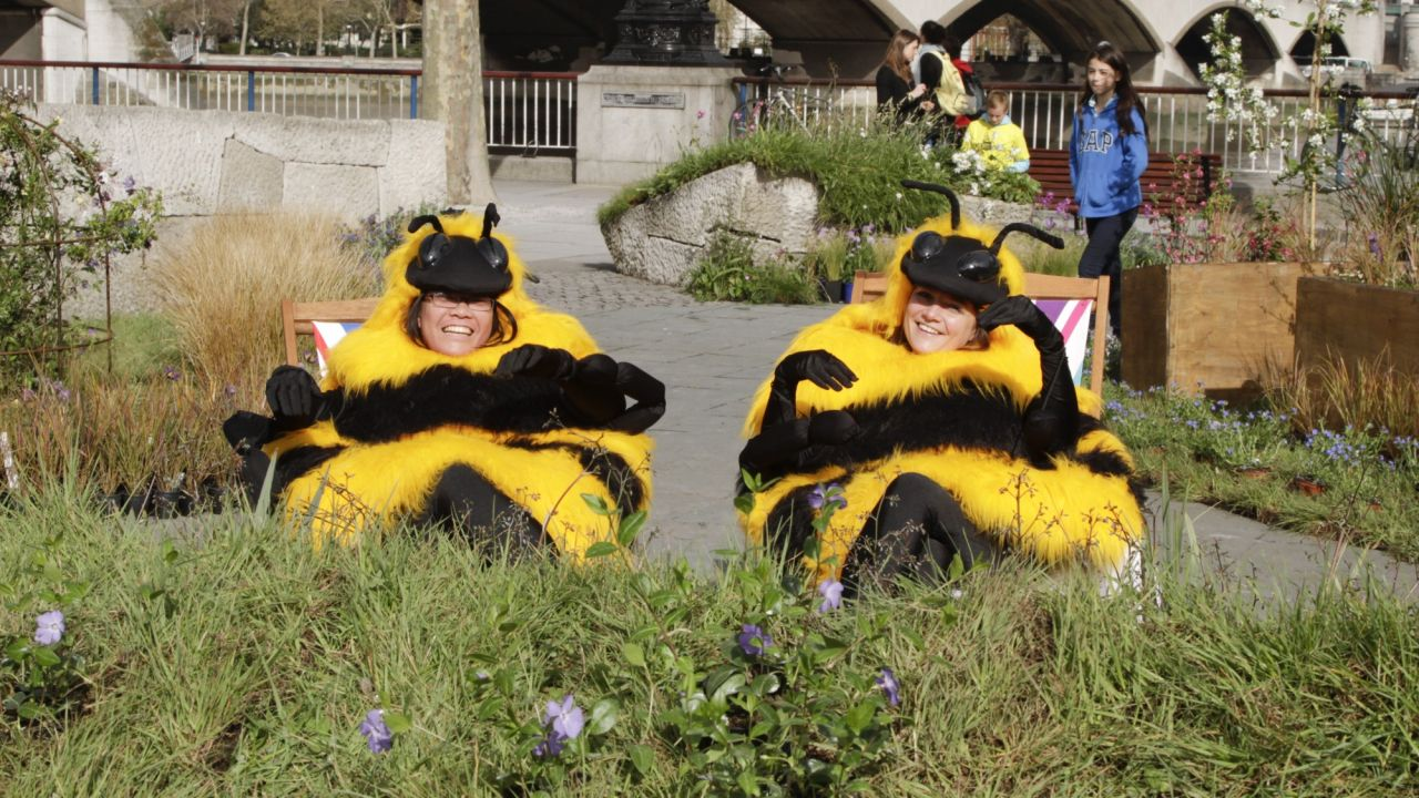 The Bee Cause launch south bank 2012