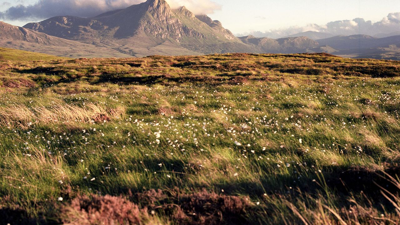 photo of Scottish moorland and mountains