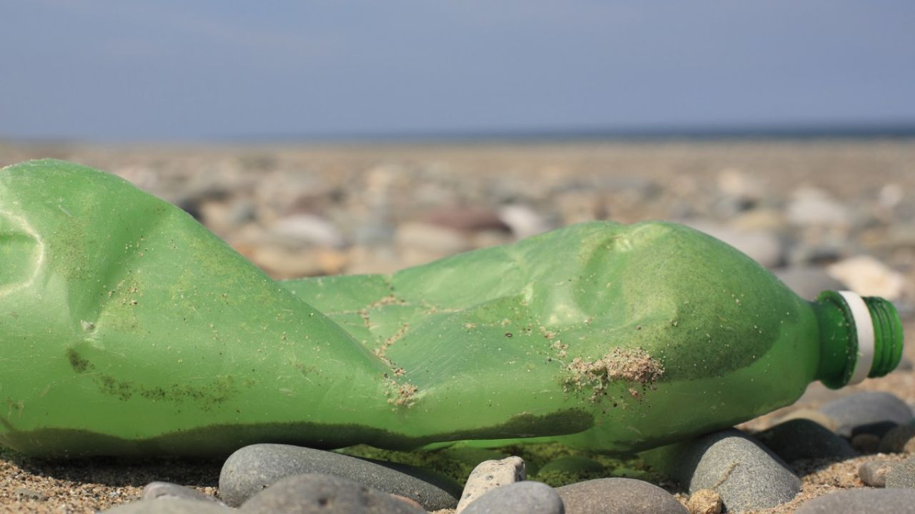 Discarded green plastic bottle on a beach