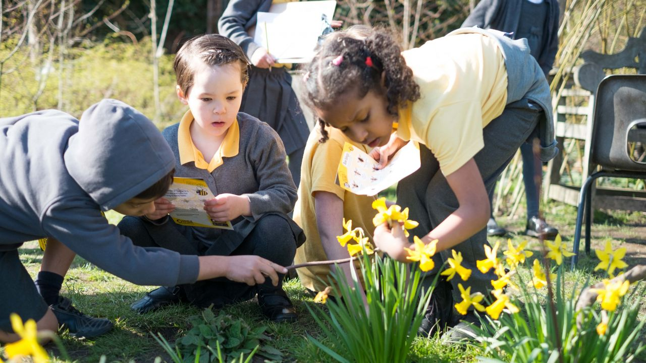 School children bee spotting for the Great British Bee Count