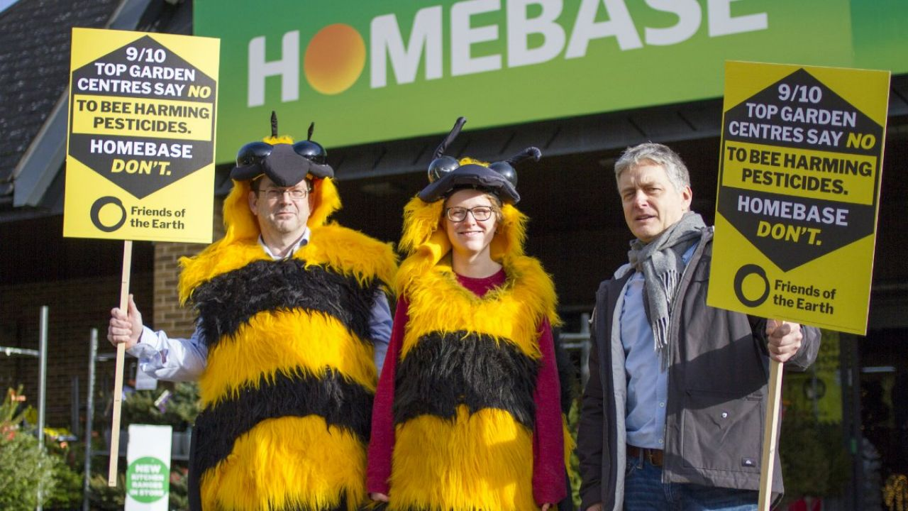 Giant bees buzz homebase over neonicotinoid pesticides