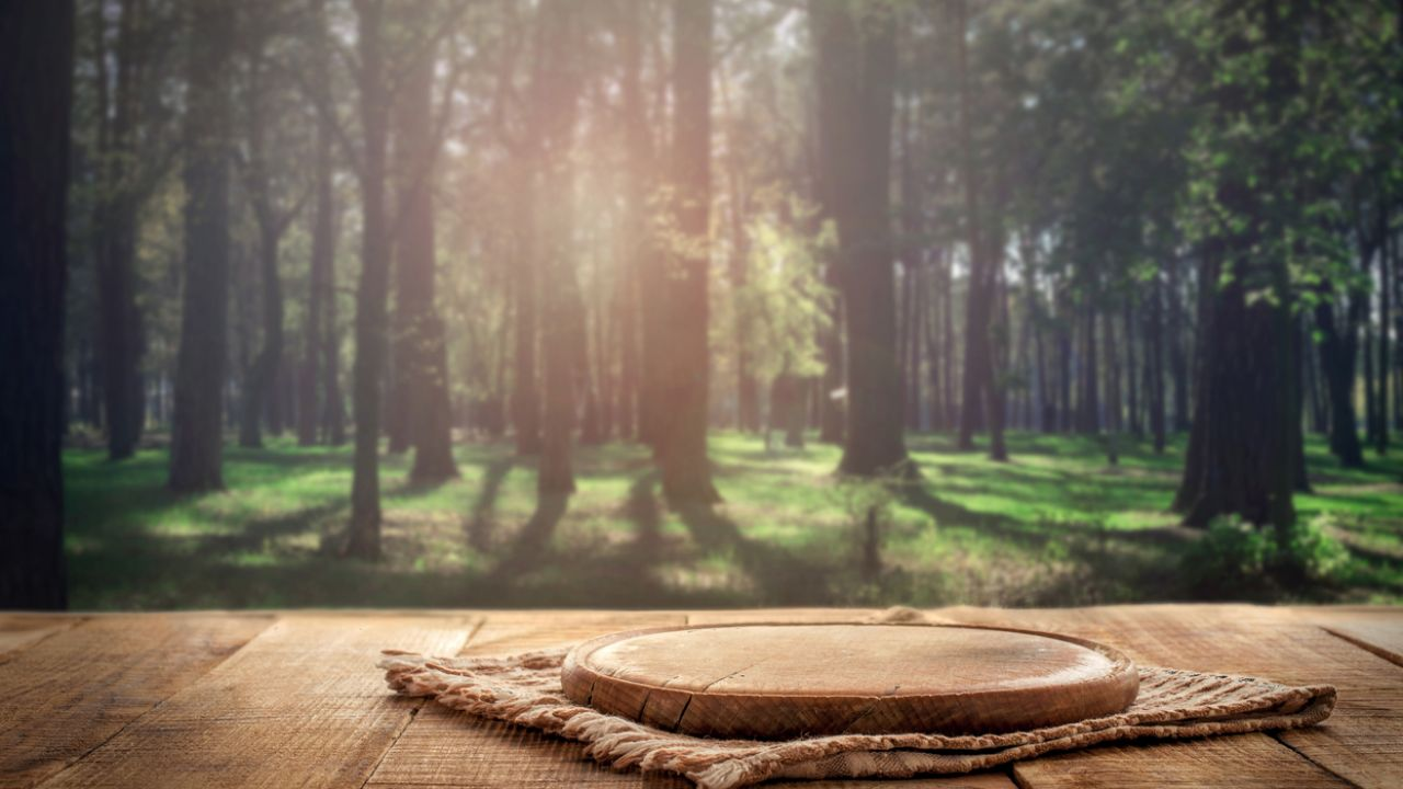 photo of wooden objects and forest
