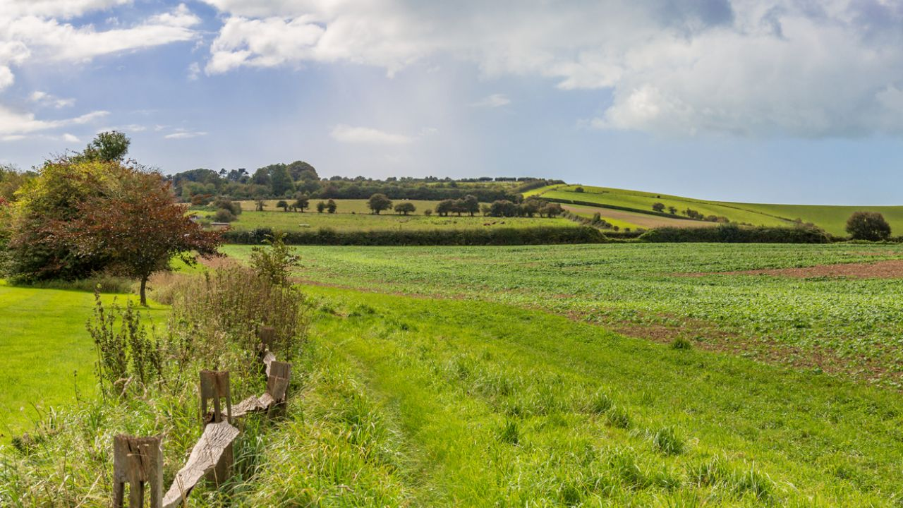 The South Downs was made a National Park in 2010