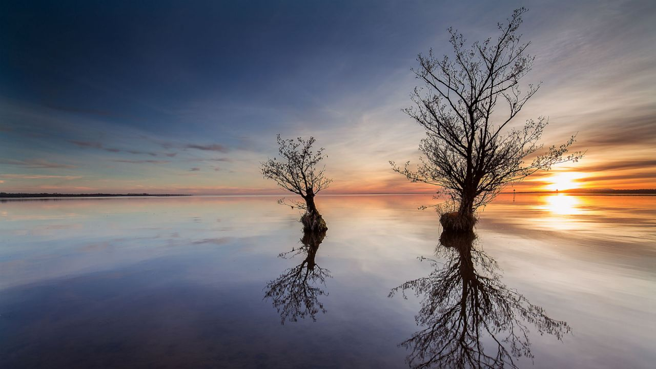Reflections of the sky and trees in the water of Lough Neagh