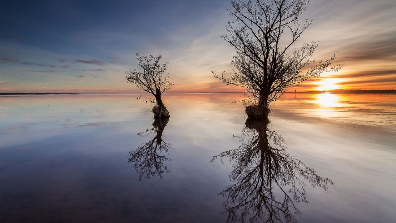The sun hovers on the horizon of Lough Neagh as 2 solitary trees and the sky are reflected in the water