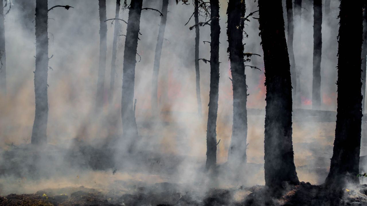 Smoke and glowing embers dominate the forest during the last of the flames of the Harding Fire in north east Saskatchewan