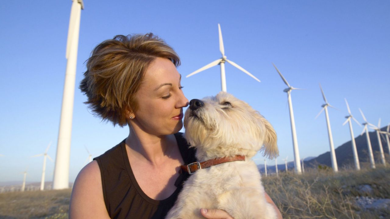 Woman and dog in front of a line of wind turbines